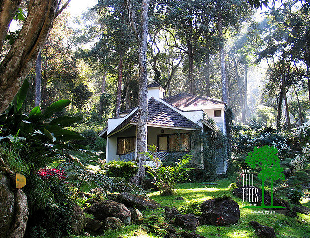 The Tall Trees Resort Munnar