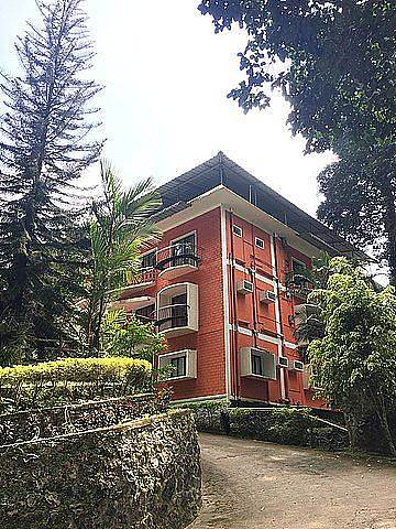 Forest Haven Resort