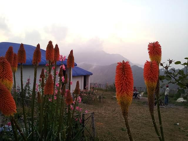 Kampland Nature Resort