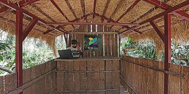 Treebo Trip Jammabane Cottage